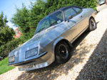 Firenza Droopsnoot in sun and shade on a gravel drive